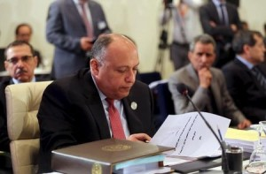 Egyptian Foreign Minister Sameh Shukri looks over a document during a meeting of Arab foreign ministers. (Reuters)