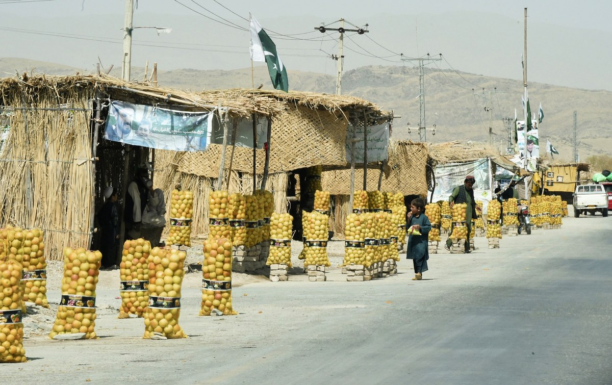 Iranian fruit smuggled through Afghan border upsets Pakistan apple cart